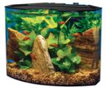 5 gal Tetra aquarium