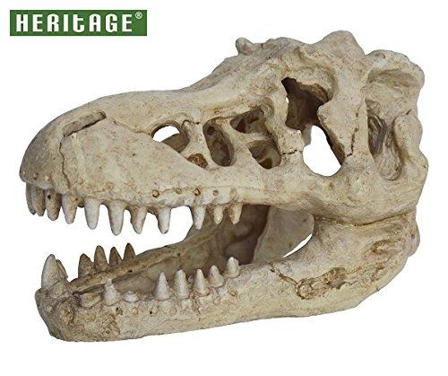 Fish Tank Ornament T-Rex Skull