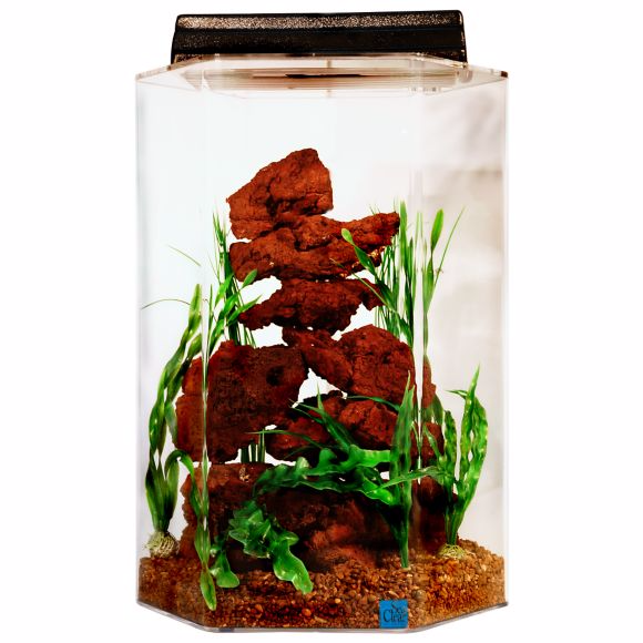 Corner fish tanks aquariums pentagon bow front for How much does a 20 gallon fish tank weigh