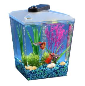 Corner Fish Tanks Aquariums Pentagon Bow Front Fishtankbank