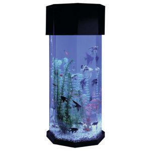 octagon-tank-fish