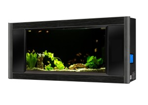 Wall Mounted Fish Tanks Amp Aquariums Fishtankbank