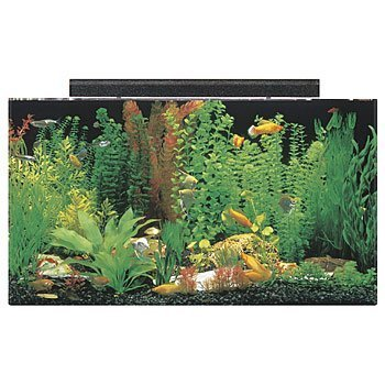 50-gallon-seaclear50-gallon-seaclear