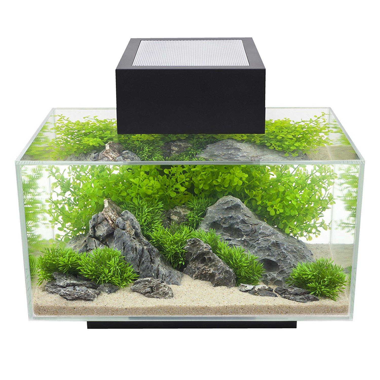 fluval-edge-aquarium