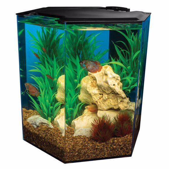 marineland-5-gallon