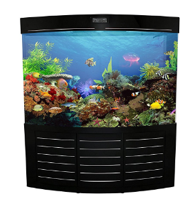 Self cleaning fish tanks aquariums fishtankbank for How often do you clean a fish tank