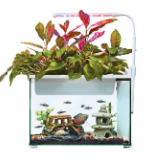 Top Fin Aquaponics aquarium for desk