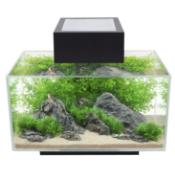 A Fluval edge aquarium