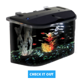 Koller 5 gallon aquarium