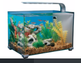 Marina 5 gallon LED fish tank