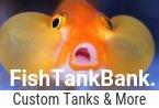 FishTankBank