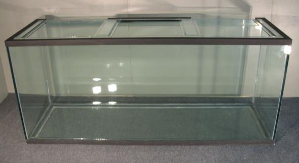 250 gallon fish tank (tall)
