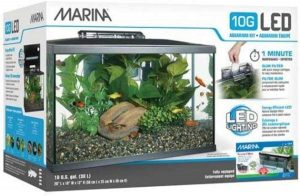Marina 10 gallon aquarium